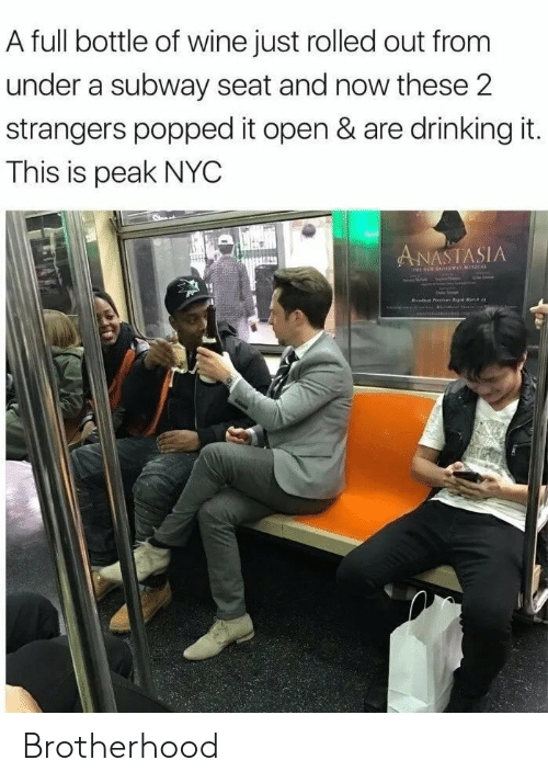 subway: A full bottle of wine just rolled out from  under a subway seat and now these 2  strangers popped it open & are drinking it.  This is peak NYC  ANASTASIA  r P e Matc Brotherhood