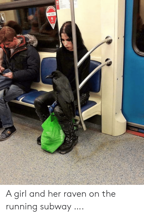 subway: A girl and her raven on the running subway ….