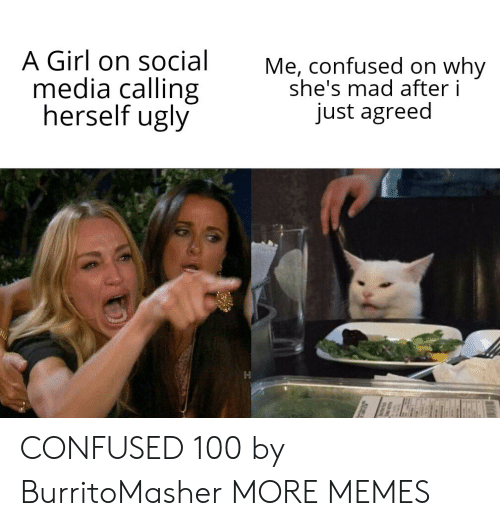 Confused, Dank, and Memes: A Girl on social  media calling  herself ugly  Me, confused on why  she's mad after i  just agreed CONFUSED 100 by BurritoMasher MORE MEMES