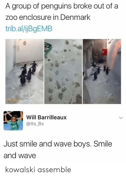 Penguins: A group of penguins broke out of a  zoo enclosure in Denmark  trib.al/ijBgEMB  Will Barrilleaux  @lts_BX  Just smile and wave boys. Smile  and wave kowalski assemble