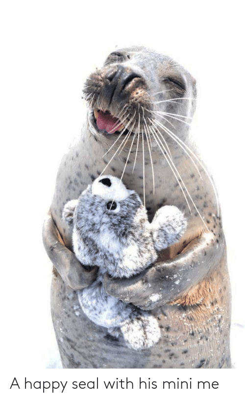Aww Memes: A happy seal with his mini me