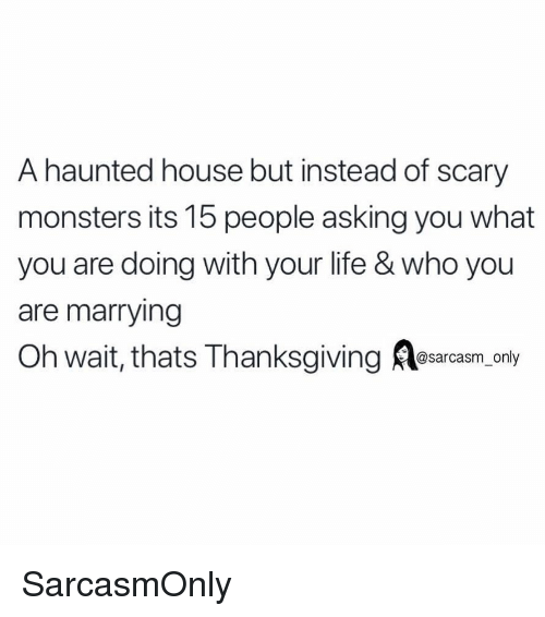 haunted house: A haunted house but instead of scary  monsters its 15 people asking you what  you are doing with your life & who you  are marrying  Oh wait, thats Thanksgiving esarcasm, only  sarcasm on SarcasmOnly