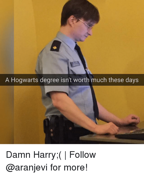 Memes, 🤖, and Hogwarts: A Hogwarts degree isn't worth much these days Damn Harry;( | Follow @aranjevi for more!
