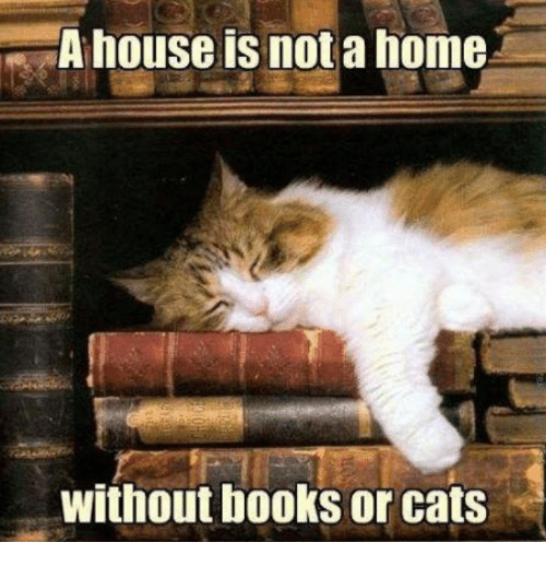 Books, Cats, and Memes: A house is not a home  without books or cats
