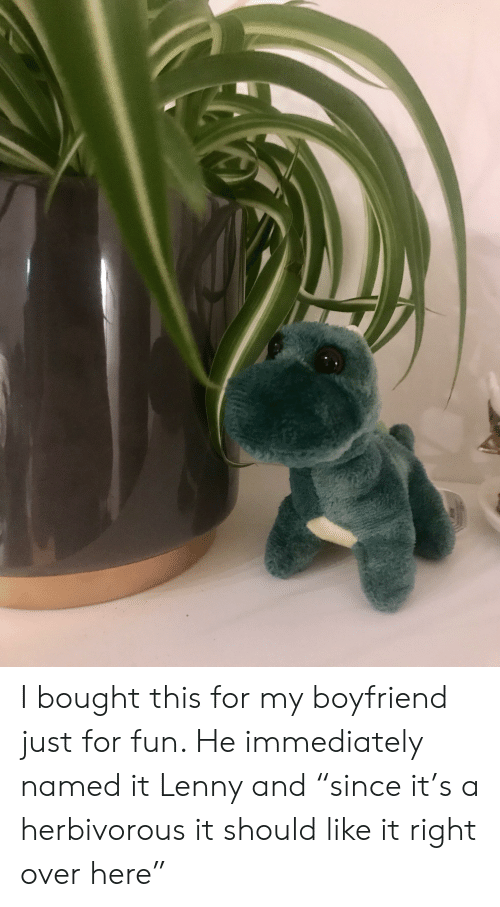 """Lenny, Boyfriend, and Fun: A I bought this for my boyfriend just for fun. He immediately named it Lenny and """"since it's a herbivorous it should like it right over here"""""""