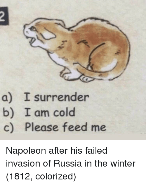 feed me: a) I surrender  b) I am cold  c) Please feed me Napoleon after his failed invasion of Russia in the winter (1812, colorized)