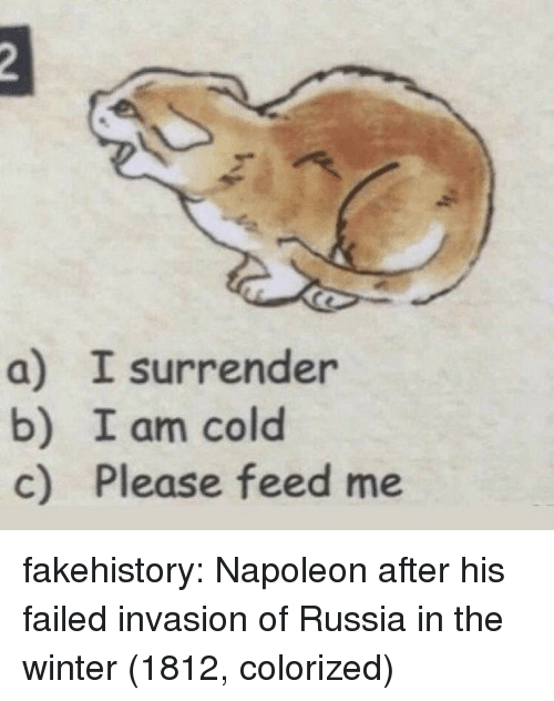 Tumblr, Winter, and Blog: a) I surrender  b) I am cold  c) Please feed me fakehistory:  Napoleon after his failed invasion of Russia in the winter (1812, colorized)