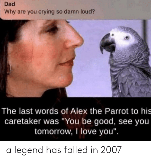 legend: a legend has falled in 2007