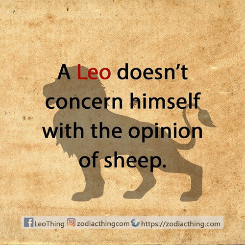 leo: A Leo doesn't  concern himself  with the opinion  of sheep.  fLeoThing zodiacthingcom https://zodiacthing.com