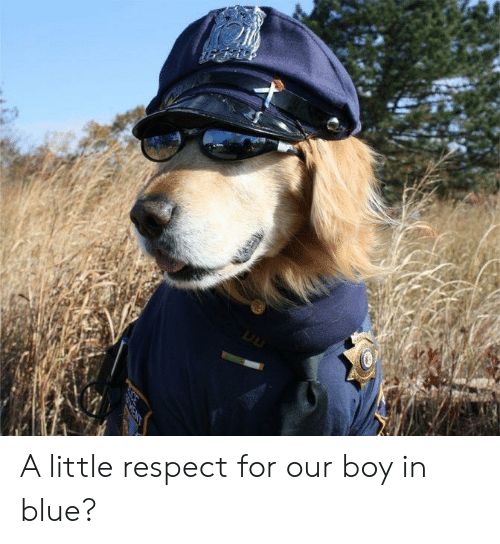 Respect, Blue, and Boy: A little respect for our boy in blue?