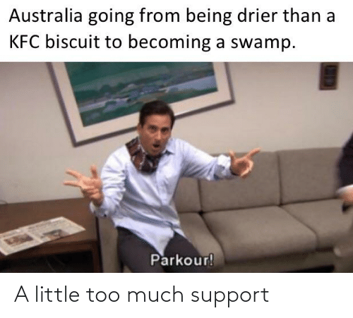 support: A little too much support