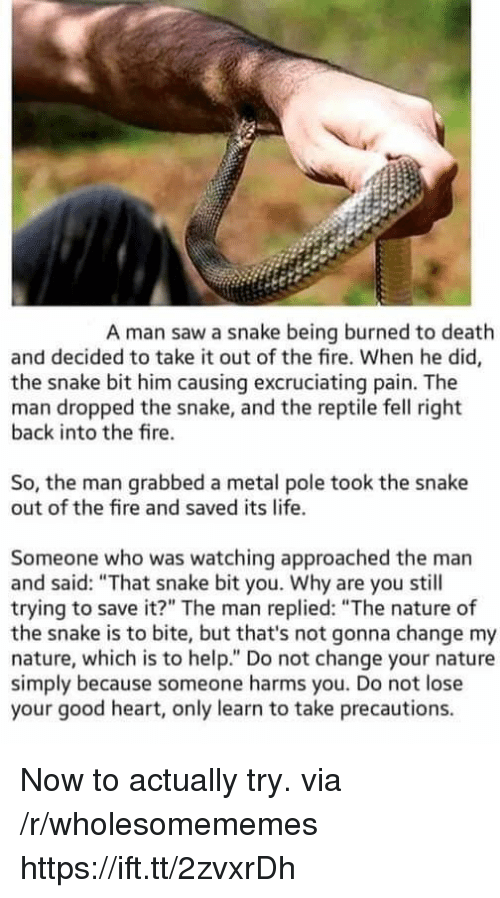 "Fire, Life, and Saw: A man saw a snake being burned to death  and decided to take it out of the fire. When he did,  the snake bit him causing excruciating pain. The  man dropped the snake, and the reptile fell right  back into the fire.  So, the man grabbed a metal pole took the snake  out of the fire and saved its life.  Someone who was watching approached the man  and said: ""That snake bit you. Why are you still  trying to save it?"" The man replied: ""The nature of  the snake is to bite, but that's not gonna change my  nature, which is to help."" Do not change your nature  simply because someone harms you. Do not lose  your good heart, only learn to take precautions. Now to actually try. via /r/wholesomememes https://ift.tt/2zvxrDh"