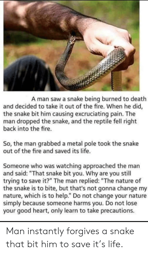 """Fire, Life, and Saw: A man saw a snake being burned to death  and decided to take it out of the fire. When he did,  the snake bit him causing excruciating pain. The  man dropped the snake, and the reptile fell right  back into the fire.  So, the man grabbed a metal pole took the snake  out of the fire and saved its life.  Someone who was watching approached the man  and said: """"That snake bit you. Why are you still  trying to save it?"""" The man replied: """"The nature of  the snake is to bite, but that's not gonna change my  nature, which is to help."""" Do not change your nature  simply because someone harms you. Do not lose  your good heart, only learn to take precautions. Man instantly forgives a snake that bit him to save it's life."""