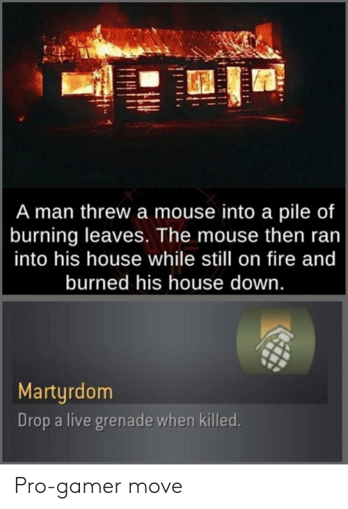 on fire: A man threw a mouse into a pile of  burning leaves. The mouse then ran  into his house while still on fire and  burned his house down.  Martyrdom  Drop a live grenade when killed. Pro-gamer move