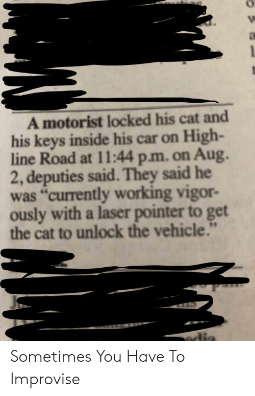 "Cat, Edia, and Car: A motorist locked his cat and  his keys inside his car on High-  line Road at 11:44 p.m. on Aug.  2, deputies said. They said he  was ""currently working vigor-  ously with a laser pointer to get  the cat to unlock the vehicle.""  edia Sometimes You Have To Improvise"