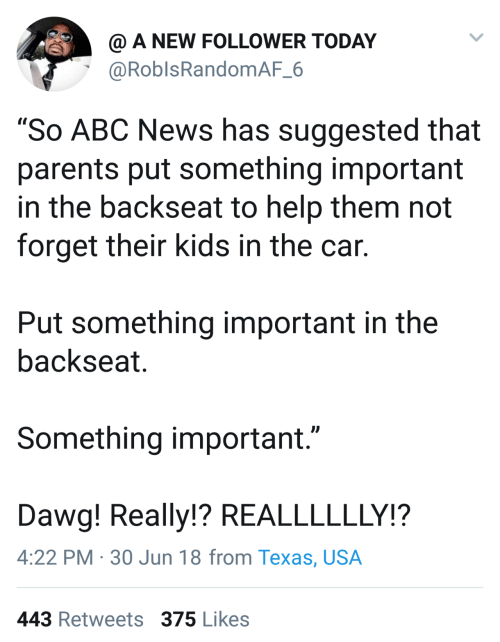 "Jun: @ A NEW FOLLOWER TODAY  @RoblsRandomAF_6  ""So ABC News has suggested that  parents put something important  in the backseat to help them not  forget their kids in the car.  Put something important in the  backseat.  Something important.""  Dawg! Really!? REALLLLLLY!?  4:22 PM · 30 Jun 18 from Texas, USA  443 Retweets 375 Likes"