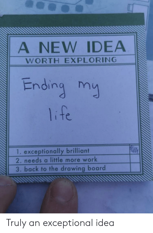 Life, Work, and Brilliant: A NEW IDEA  WORTH EXPLORING  Ending my  life  1. exceptionally brilliant  2. needs a little more work  3. back to the drawing board Truly an exceptional idea