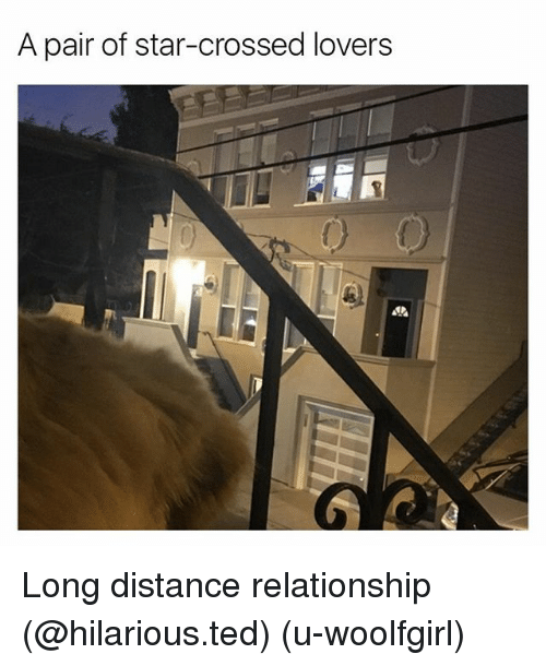 Funny, Ted, and Star: A pair of star-crossed lovers Long distance relationship (@hilarious.ted) (u-woolfgirl)