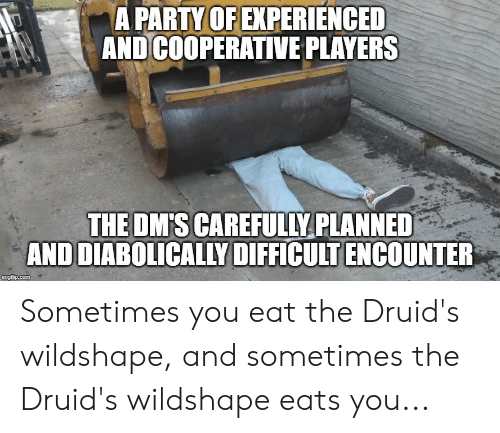 Party, DnD, and Com: A PARTY OF EXPERIENCED  AND COOPERATIVE PLAYERS  THE DM'S CAREFULLY PLANNED  AND DIABOLICALLY DIFFICULT ENCOUNTER  imgflip.com Sometimes you eat the Druid's wildshape, and sometimes the Druid's wildshape eats you...