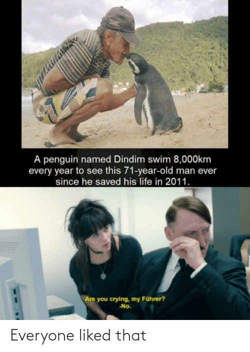 Penguin: A penguin named Dindim swim 8,000km  every year to see this 71-year-old man ever  since he saved his life in 2011.  Are you crying, my Führer?  -No. Everyone liked that