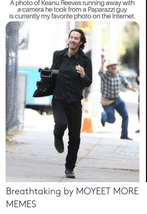 Dank, Internet, and Memes: A photo of Keanu Reeves running away with  a camera he took from a Paparazzi guy  is currently my favorite photo on the Internet. Breathtaking by MOYEET MORE MEMES