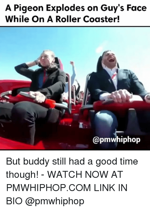 Rollers: A Pigeon Explodes on Guy's Face  While On A Roller Coaster!  @pmwhiphop But buddy still had a good time though! - WATCH NOW AT PMWHIPHOP.COM LINK IN BIO @pmwhiphop