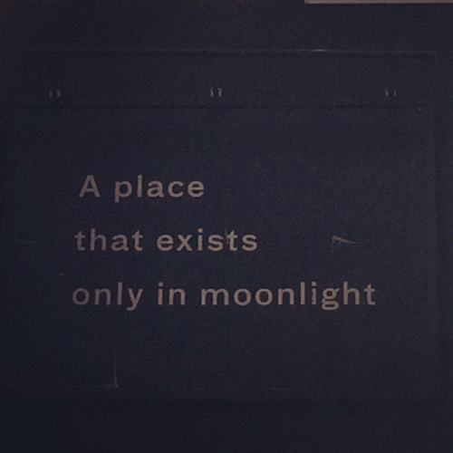 Moonlight: A place  that exists  only in moonlight