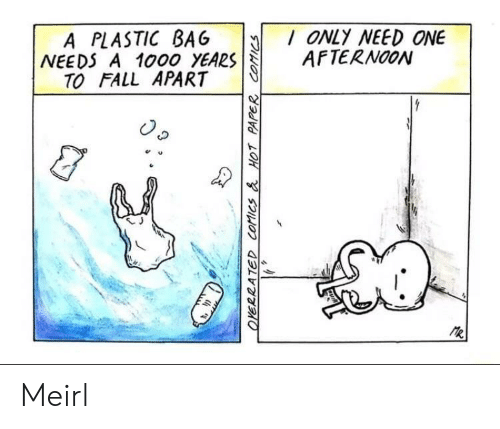 Fall, MeIRL, and A Plastic Bag: A PLASTIC BAG ONLY NEED ONE  NEEDS A 1000 YEARSAFTERNOON  TO FALL APART  e u  乀J Meirl