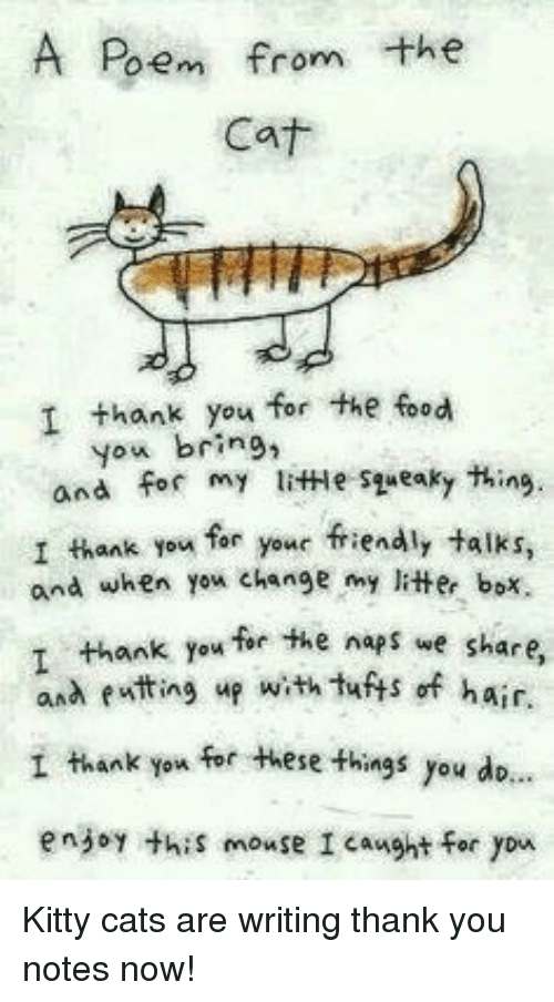 litter box: A Poem from the  Cat  I thank you for the food  you bring,  and for my litHe syueaky thing.  I thank you far your friendly talks,  and when yex change my litter box.  ank you for the naps we share  and eatting up with tuts of hair.  I thank you for these things you dio.  enjoy thiS mouse I caught for yon <p>Kitty cats are writing thank you notes now!</p>