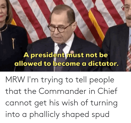 the commander: A president must not be  allowed to become a dictator. MRW I'm trying to tell people that the Commander in Chief cannot get his wish of turning into a phallicly shaped spud