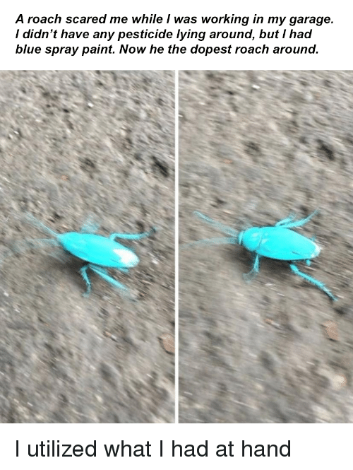 Blue, Paint, and Lying: A roach scared me while I was working in my garage.  / didn't have any pesticide lying around, but I had  blue spray paint. Now he the dopest roach around I utilized what I had at hand