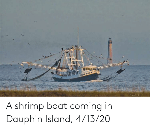 Coming In: A shrimp boat coming in Dauphin Island, 4/13/20
