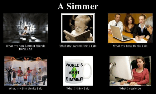 What I really do: A Simmer  What my non Simmer friends  think I do  What my parents think I do  What my boss thinks I do  WORLD'S  SIMMER  What my Sim thinks I do  What I think I do  What I really do
