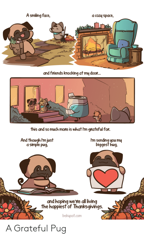 pug: A smiling face,  a cozy space,  and fRiends knocking at my dooR...  this and so much moRe is what I'm gRateful for.  I'm sending you mu  biggest hug.  And though I'm just  a simple pug,  and hoping we'Re all living  the happiest of Thanksgivings.  bekyoot.com A Grateful Pug