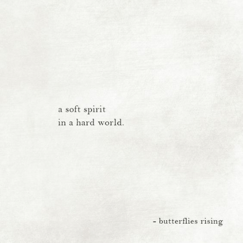 Spirit, World, and Butterflies: a soft spirit  in a hard world.  - butterflies rising