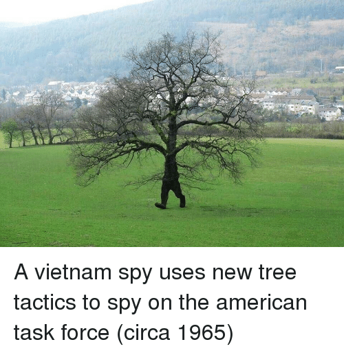 task force: A vietnam spy uses new tree tactics to spy on the american task force (circa 1965)