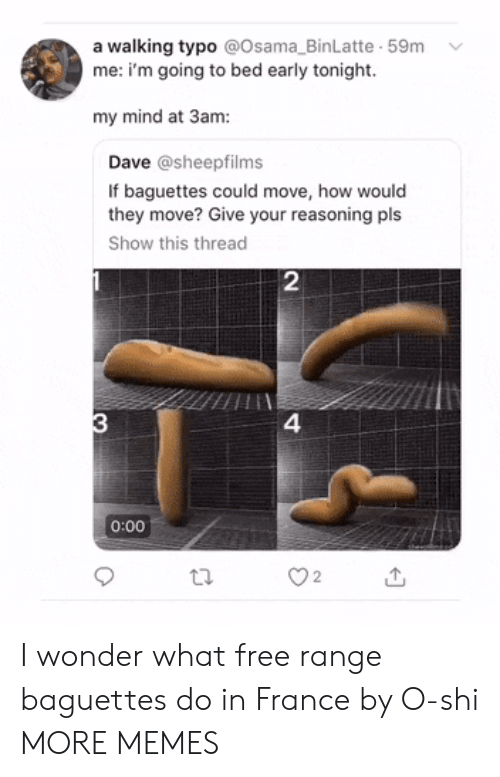 Dank, Memes, and Target: a walking typo @Osama_BinLatte 59m  me: i'm going to bed early tonight.  my mind at 3am:  Dave @sheepfilms  If baguettes could move, how would  they move? Give your reasoning pls  Show this thread  2  4  0:00  O2 I wonder what free range baguettes do in France by O-shi MORE MEMES
