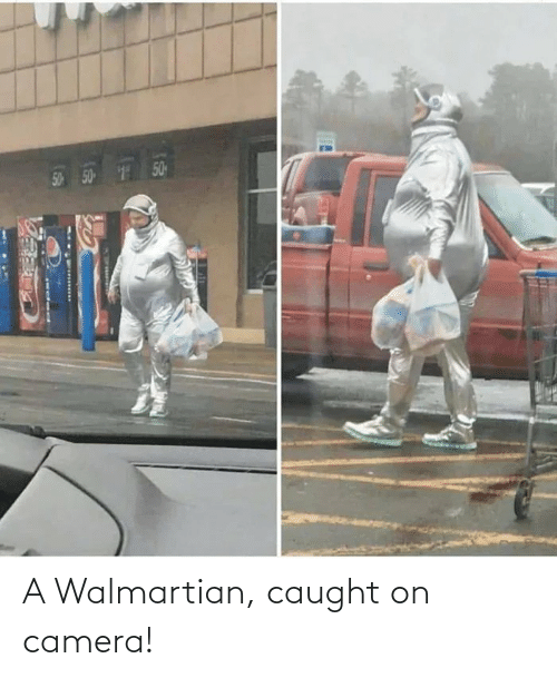 Caught: A Walmartian, caught on camera!