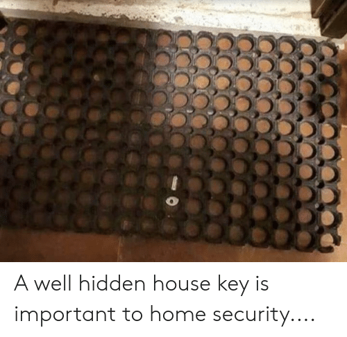 Memes, Home, and House: A well hidden house key is important to home security....