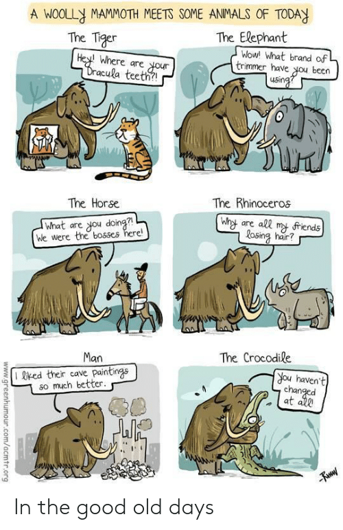 trimmer: A WOOLLY MAMMOTH MEETS SOME ANMALS OF TODAY  The Tiger  The Elephant  Where are your  acula teeth?  wowl what brand ofL  trimmer have ou been  The Horse  The Rhinoceros  what are ou doina?  We were the bosses here!  Wht are all m friends  osing hair?  Man  The Crocodile  I red their cave paintings  so much better.  you havent  at In the good old days