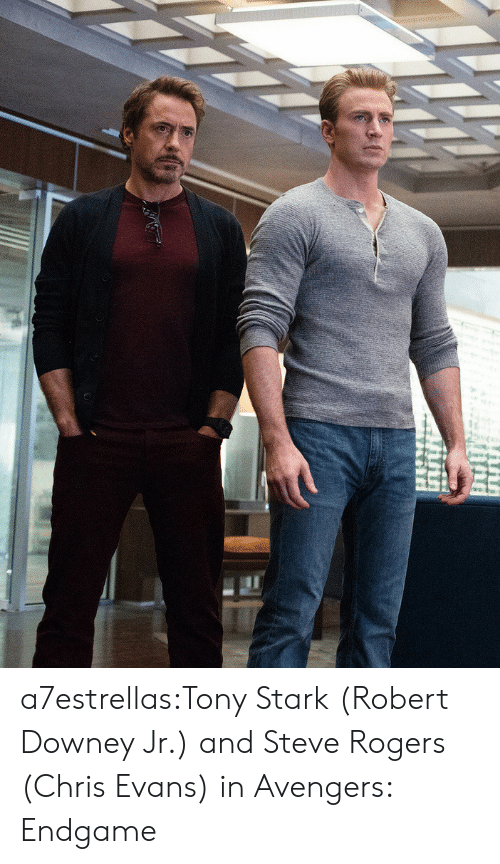 Robert Downey Jr.: a7estrellas:Tony Stark (Robert Downey Jr.) and Steve Rogers (Chris Evans) in Avengers: Endgame