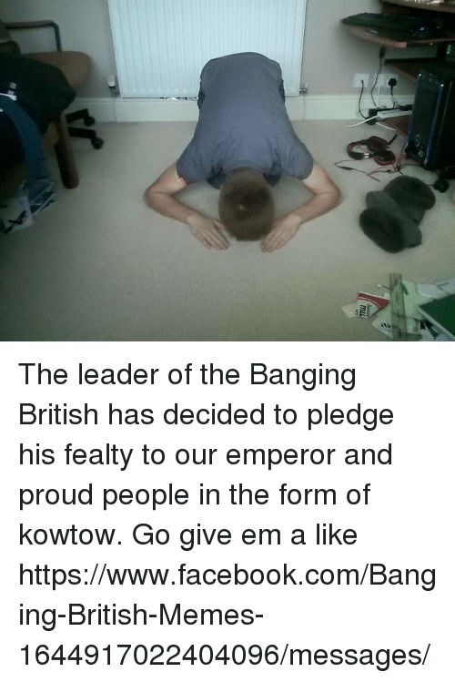 Campestral Chinese: ab The leader of the Banging British has decided to pledge his fealty to our emperor and proud people in the form of kowtow.   Go give em a like  https://www.facebook.com/Banging-British-Memes-1644917022404096/messages/