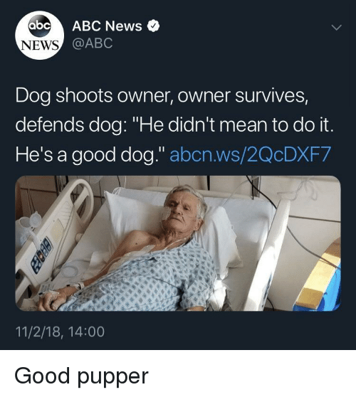 "Abc, News, and Abc News: abc ABC News o  @ABC  NEWS  Dog shoots owner, owner survives,  defends dog: ""He didn't mean to do it  He's a good dog."" abcn.ws/2QcDXF7  11/2/18, 14:00 Good pupper"