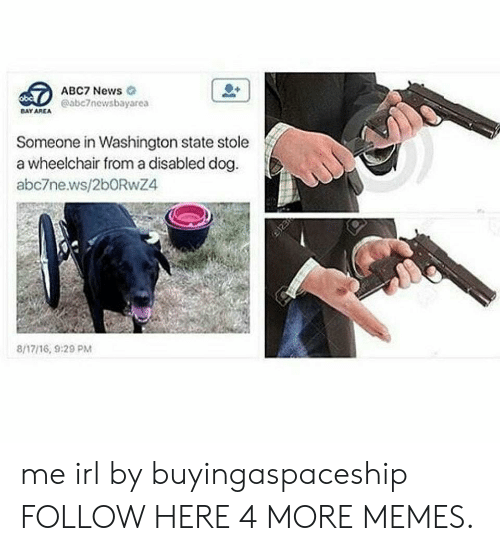 washington state: ABC7 News  @abc7newsbayarea  DAY AREA  Someone in Washington state stole  a wheelchair from a disabled dog  abc7news/2bORwZ4  8/17/16, 9:29 PM me irl by buyingaspaceship FOLLOW HERE 4 MORE MEMES.