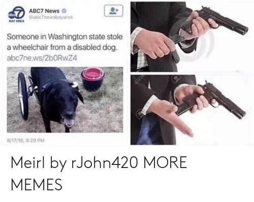washington state: ABC7 News  eabc7newsbayarea  DAY AREA  Someone in Washington state stole  a wheelchair from a disabled dog.  abc7ne.ws/2bORwZ4  8/17/16, 9 20 PM Meirl by rJohn420 MORE MEMES