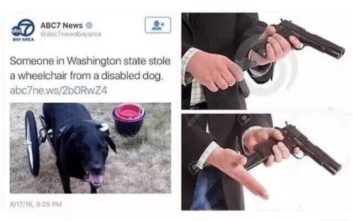 News, Abc7, and Dog: ABC7 News  eabe7newsbayarea  bo  DAY AREA  Someone in Washington state stole  a wheelchair from a disabled dog.  a ьс7ne.ws/2bORwZ4  8/1716, 9:29 PM