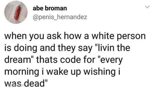 """Memes, Penis, and White: abe broman  @penis_hernandez  when you ask how a white person  is doing and they say """"livin the  dream"""" thats code for """"every  morning i wake up wishing i  was dead"""""""