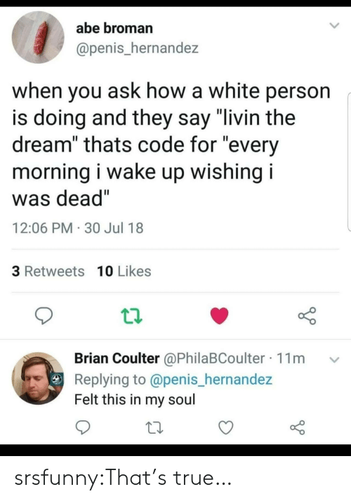 """True, Tumblr, and Blog: abe broman  @penis_hernandez  when you ask how a white person  is doing and they say """"livin the  dream"""" thats code for """"every  morning i wake up wishing i  was dead""""  12:06 PM 30 Jul 18  3 Retweets 10 Likes  Brian Coulter @PhilaBCoulter 11m  Replying to @penis_hernandez  Felt this in my soul srsfunny:That's true…"""