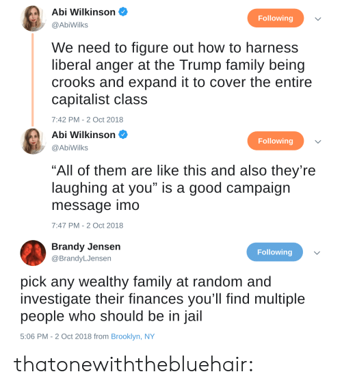 """imo: Abi Wilkinson  @AbiWilks  Following  We need to figure out how to harness  liberal anger at the Trump family being  crooks and expand it to cover the entire  capitalist class  7:42 PM-2 Oct 2018   Abi Wilkinson  Following  @AbiWilks  """"All of them are like this and also they're  laughing at you"""" is a good campaign  message imo  7:47 PM-2 Oct 2018   Brandy Jensen  @BrandyLJensen  Following  pick any wealthy family at random and  investigate their finances you'll find multiple  people who should be in jail  5:06 PM - 2 Oct 2018 from Brooklyn, NY thatonewiththebluehair:"""