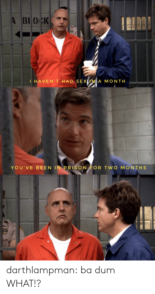 Tumblr, Prison, and Blog: ABLOCK  HAVEN'T HAD SEXIN A MONTH  YOU'VE BEEN IN PRISON FOR TWO MONTHS darthlampman:  ba dum WHAT!?